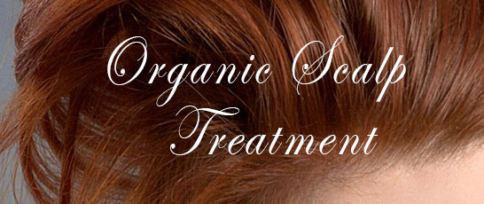 Organic scalp treatment package